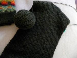 Wild Apple scarf in progress